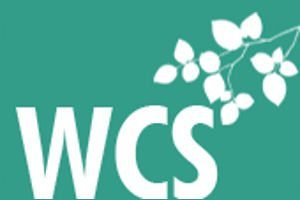 Wicklow Counselling Logo