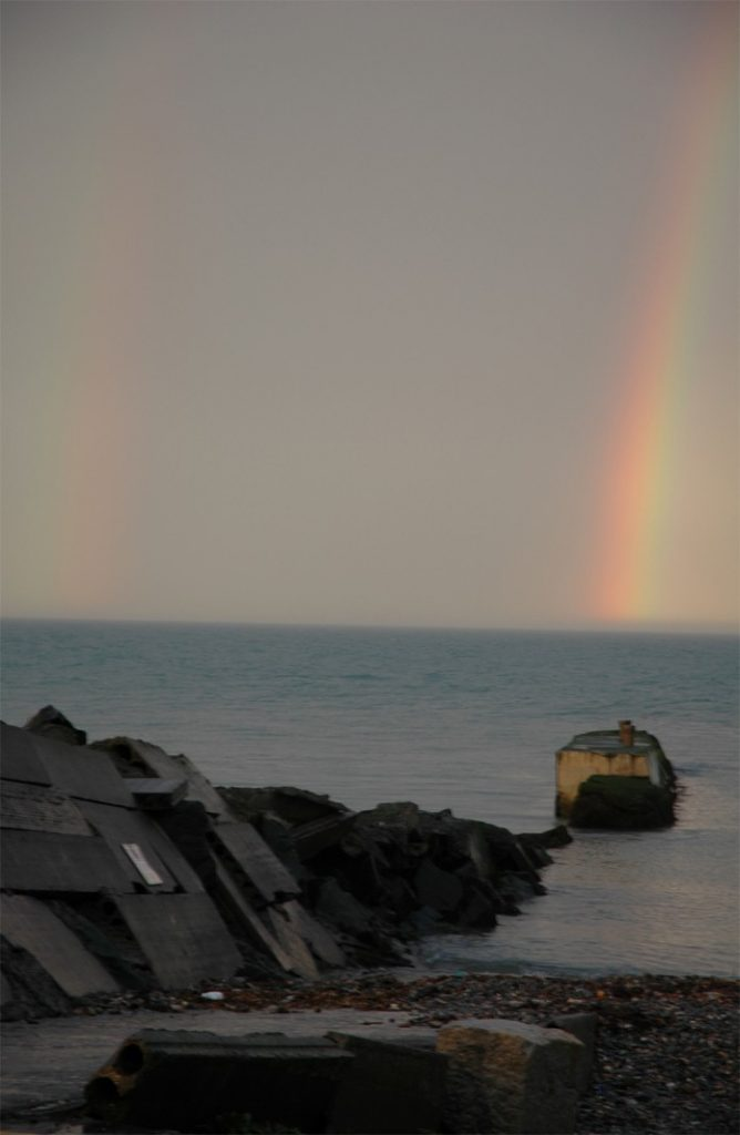 Harbour Rainbow