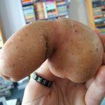 Happy Pear Releasing Sexy Fruit & Veg Xmas Calendar