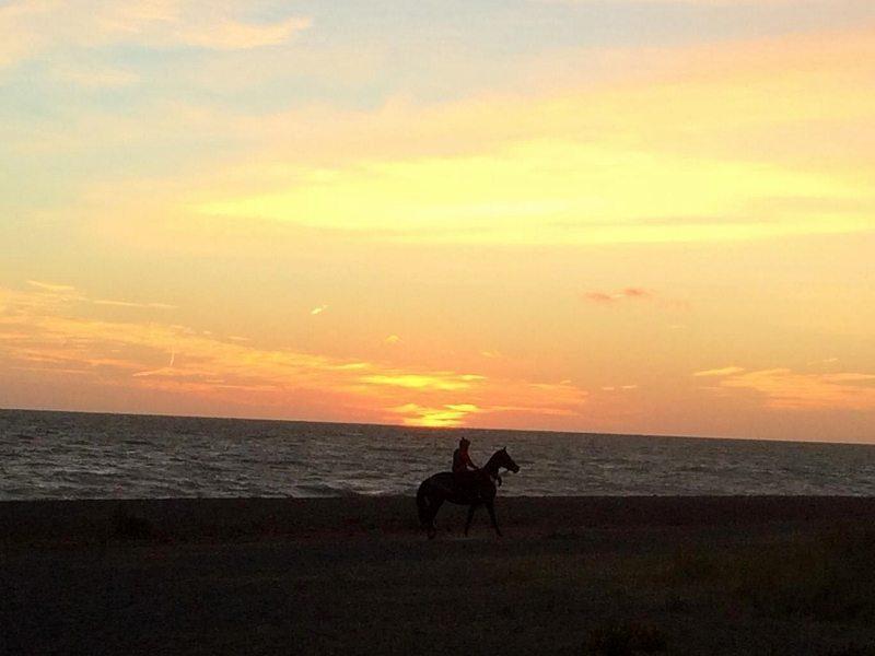 Sunrise Horse Sunday 4DEC16 Ruth Spurling