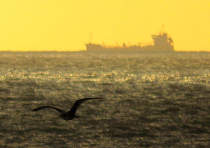 Sunrise Ship NOV16 Brian Keeley
