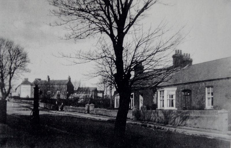 Mount View 100 years ago. Source Derek Paine (800x513)