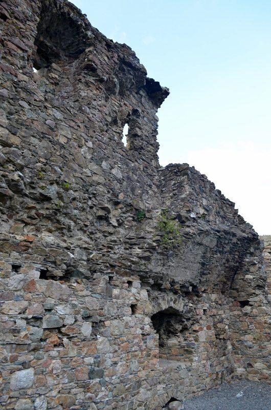 Kindlestown Castle Dromont 3MAY16 10 (530x800)