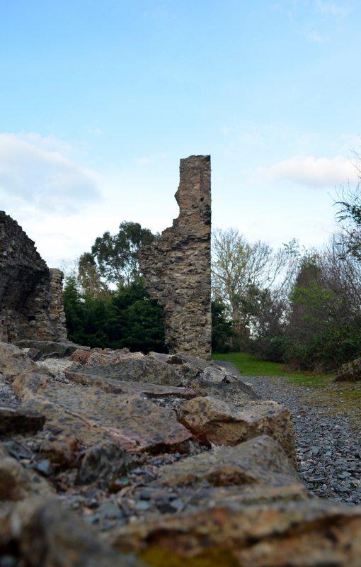 Kindlestown Castle Dromont 3MAY16 14 (510x800)