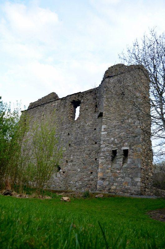 Kindlestown Castle Dromont 3MAY16 19 (530x800)