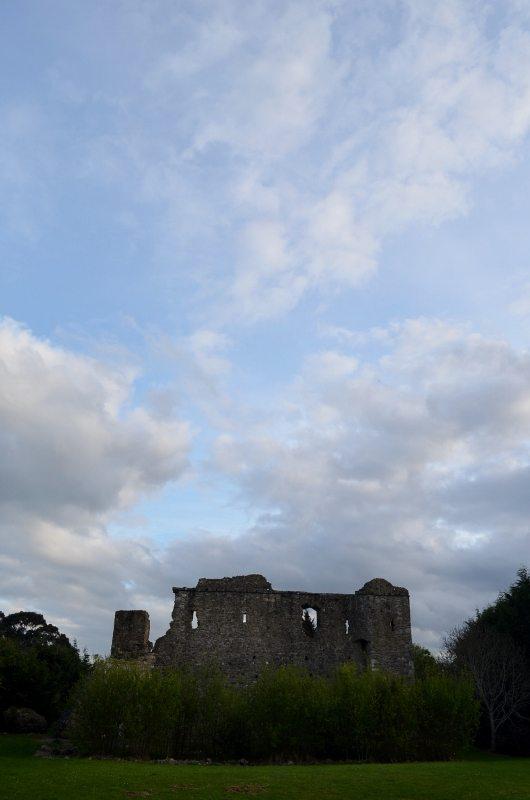 Kindlestown Castle Dromont 3MAY16 3 (530x800)