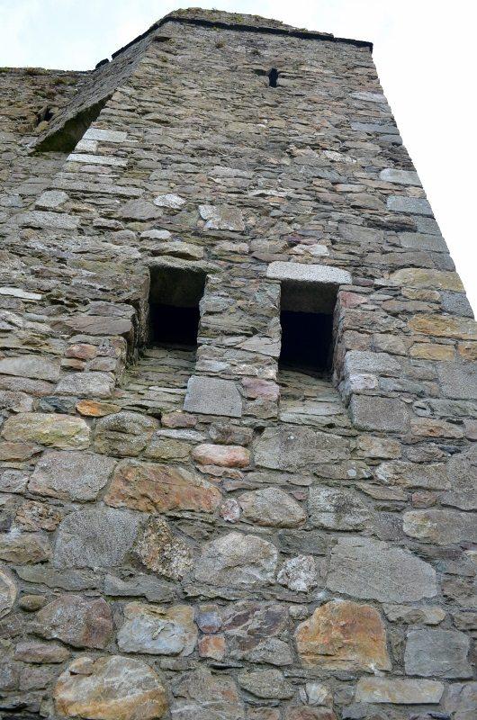 Kindlestown Castle Dromont 3MAY16 30 (530x800)