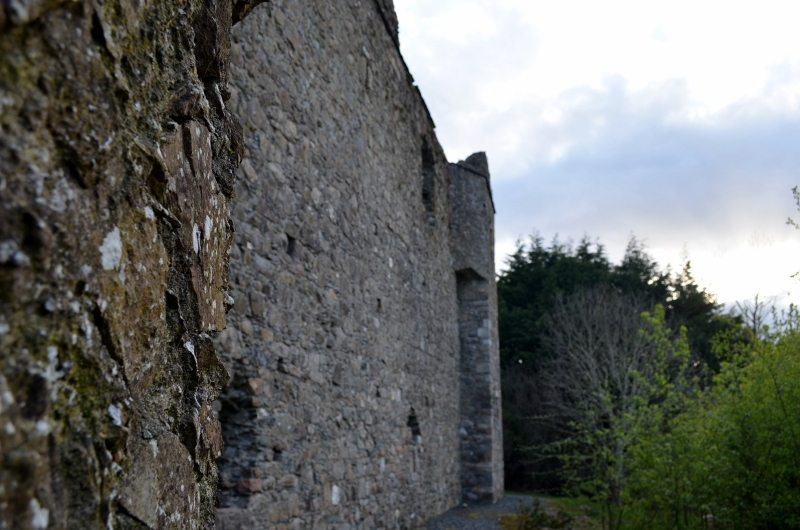 Kindlestown Castle Dromont 3MAY16 34 (800x530)