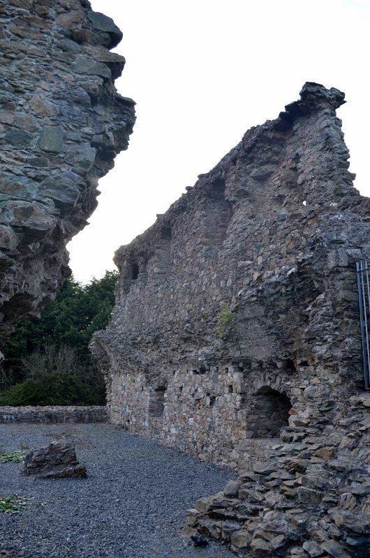 Kindlestown Castle Dromont 3MAY16 5 (530x800)