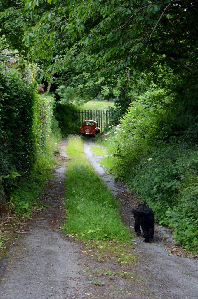 Mass Path Drummin Lane 14JULY16 16 (678x1024)