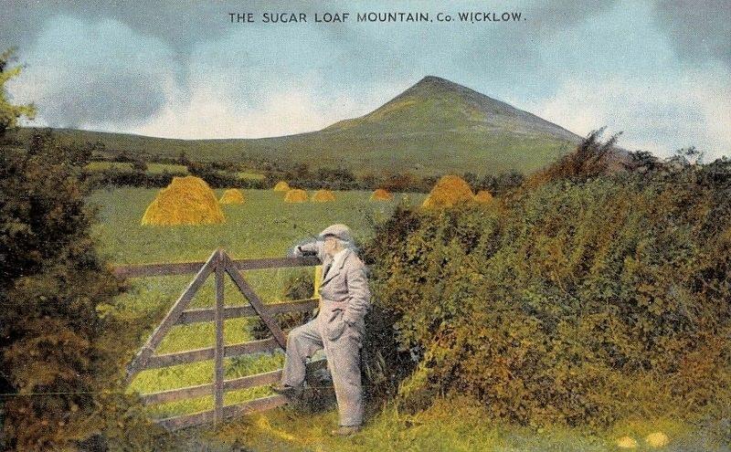 Art William Henry Drake The Old Oak Landscape Calendar September 1922 Rare Vtg Art Providing Amenities For The People; Making Life Easier For The Population