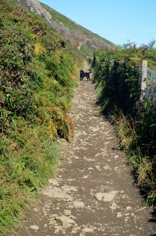 bus-out-of-bray-cliff-walk-18oct16-29