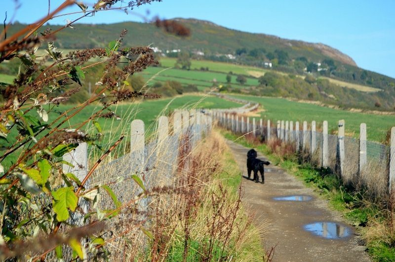 bus-out-of-bray-cliff-walk-18oct16-9