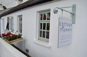 cottage-flowers-andrew-nov-2015-10-1024x678