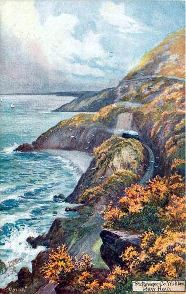 Cliff Walk Postcard