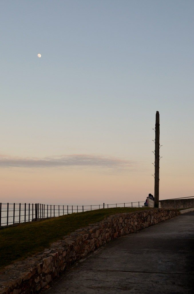 Cove Pole Moon Sunset 20th Mar 2016 (678x1024)