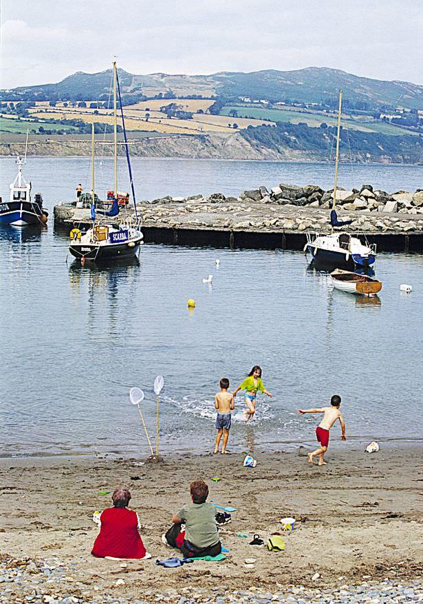 Summer Fun at Greystones Harbour
