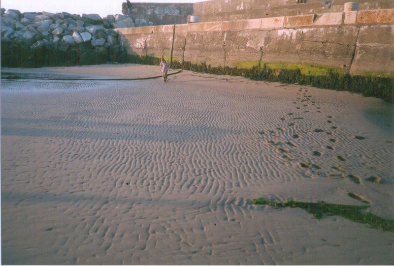 Harbour Soft Sand Pic Patrick Neary
