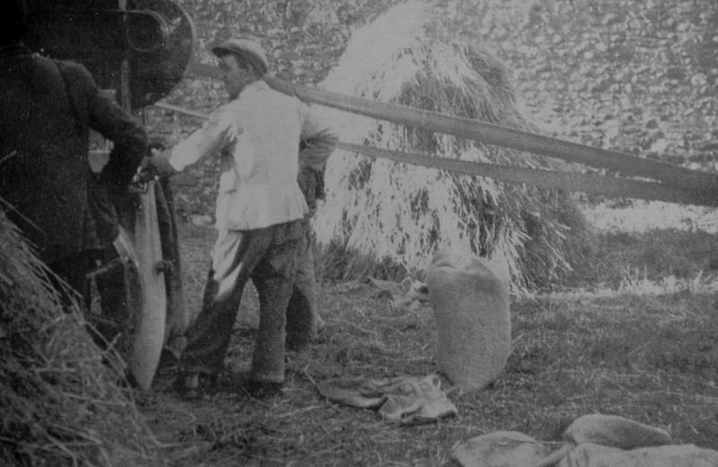 North Beacher Michael Byrne works the thresher at Dann's. Source Derek Paine