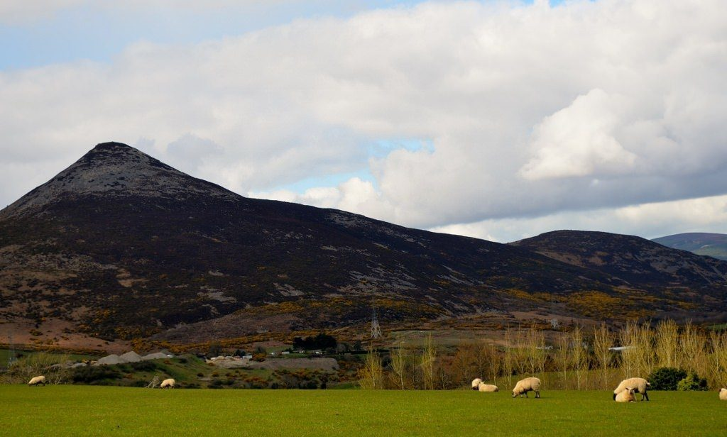 Walk In The Woods 16APR16 28 Sheep Sugarloaf (1024x616)