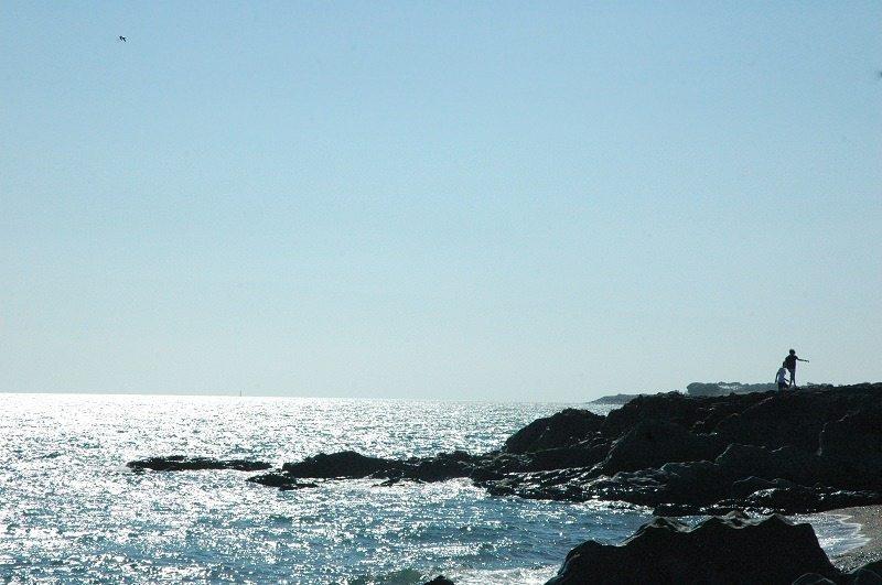 south beach cove silhouette